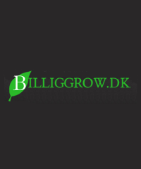 BilligGrow