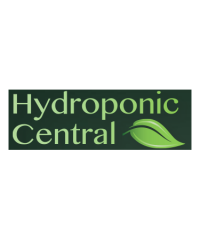 Hydroponic Central / Mirror Paints