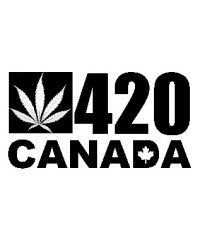 420 Kingston