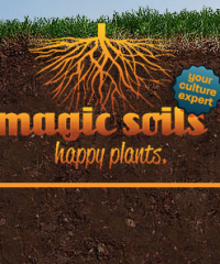 Magic Soils