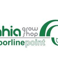 Bahia Indoorlinepoint