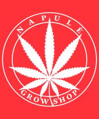 Napulè Growshop